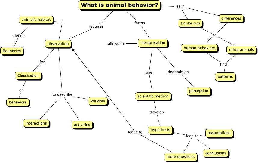 animal behavior preyanka and kyla first. Black Bedroom Furniture Sets. Home Design Ideas