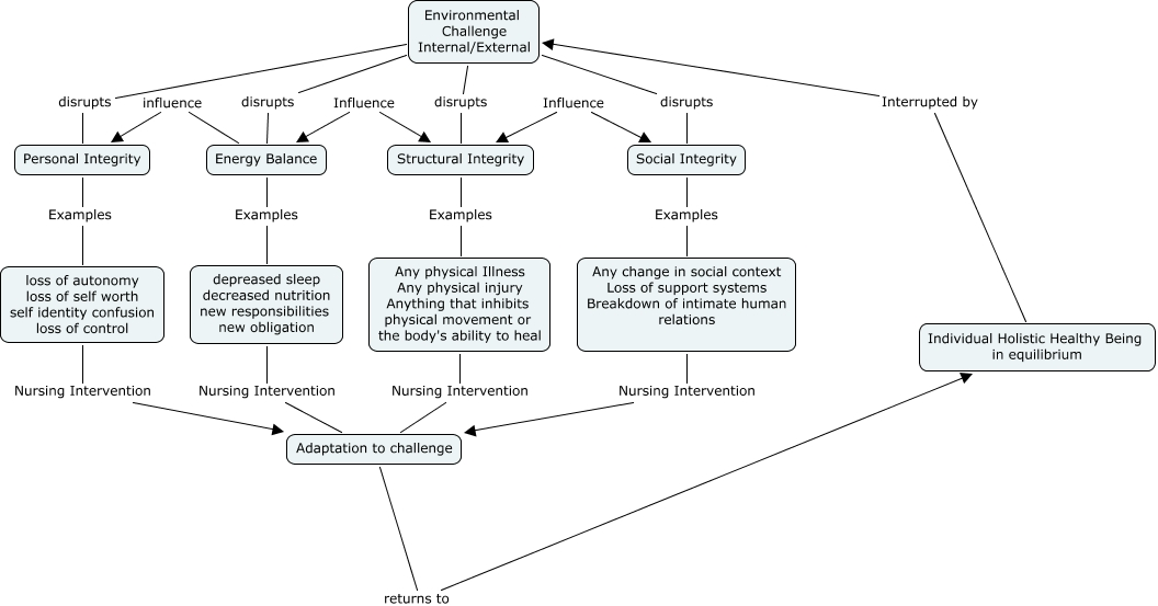 Levine Concept Map What Are The Concepts Of Levine S Theory