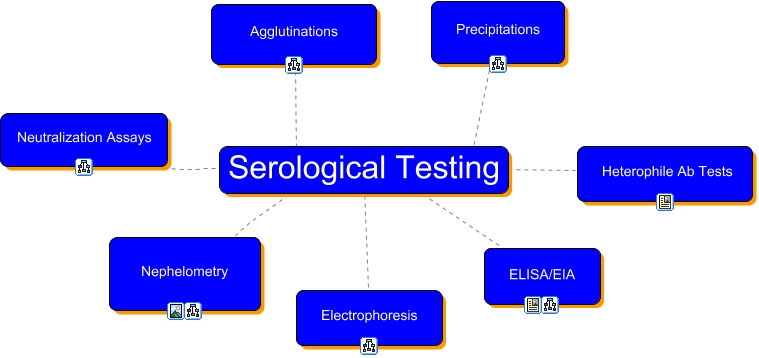 serological testing exercise 12 Name: exercise 12: serological testing: activity 1: using direct fluorescent antibody technique to test for chlamydia lab report pre-lab quiz results you scored 100% by answering 4 out of 4 questions correctly.