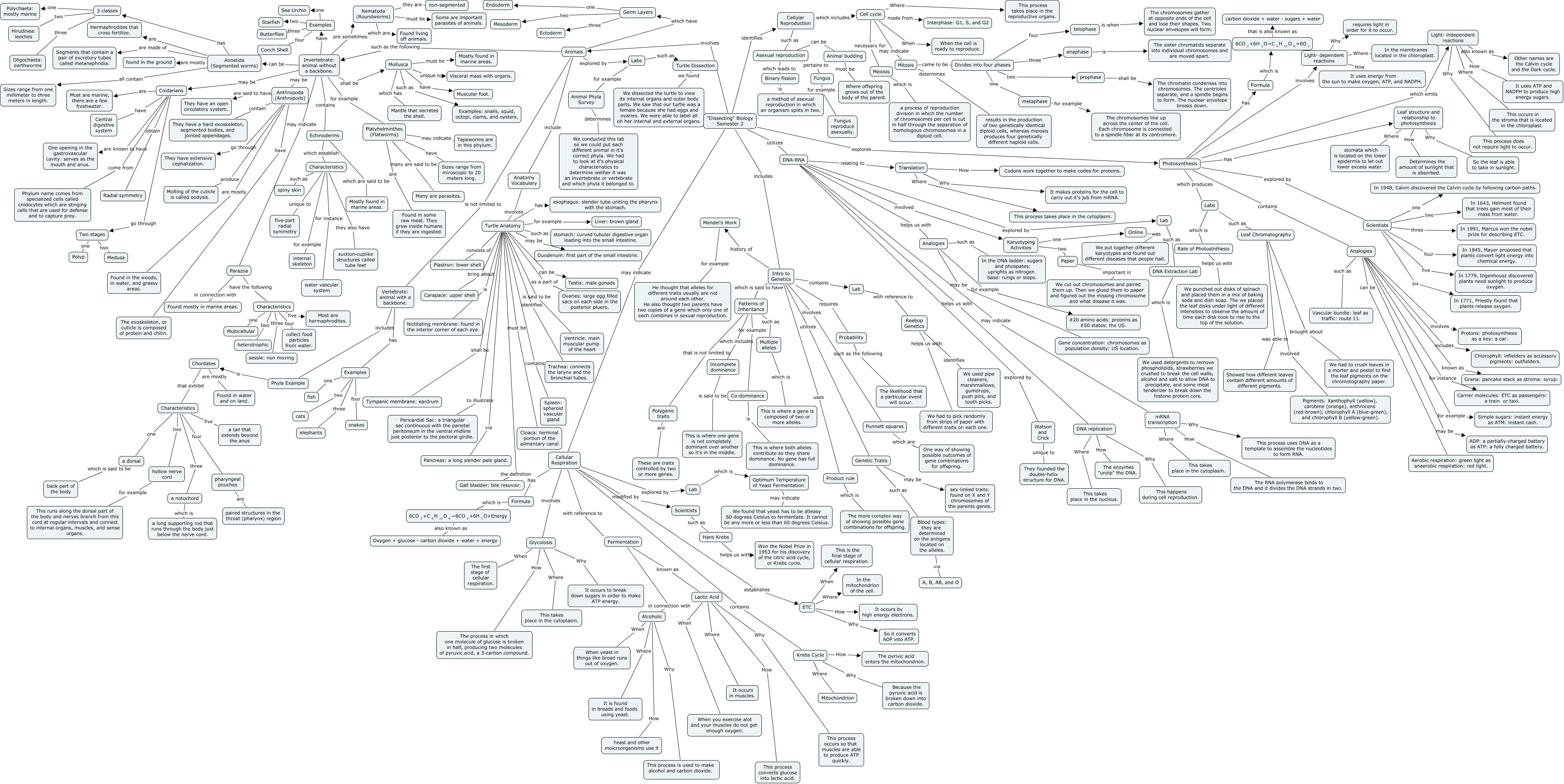 Danielle Duffy Semester 2 concept map
