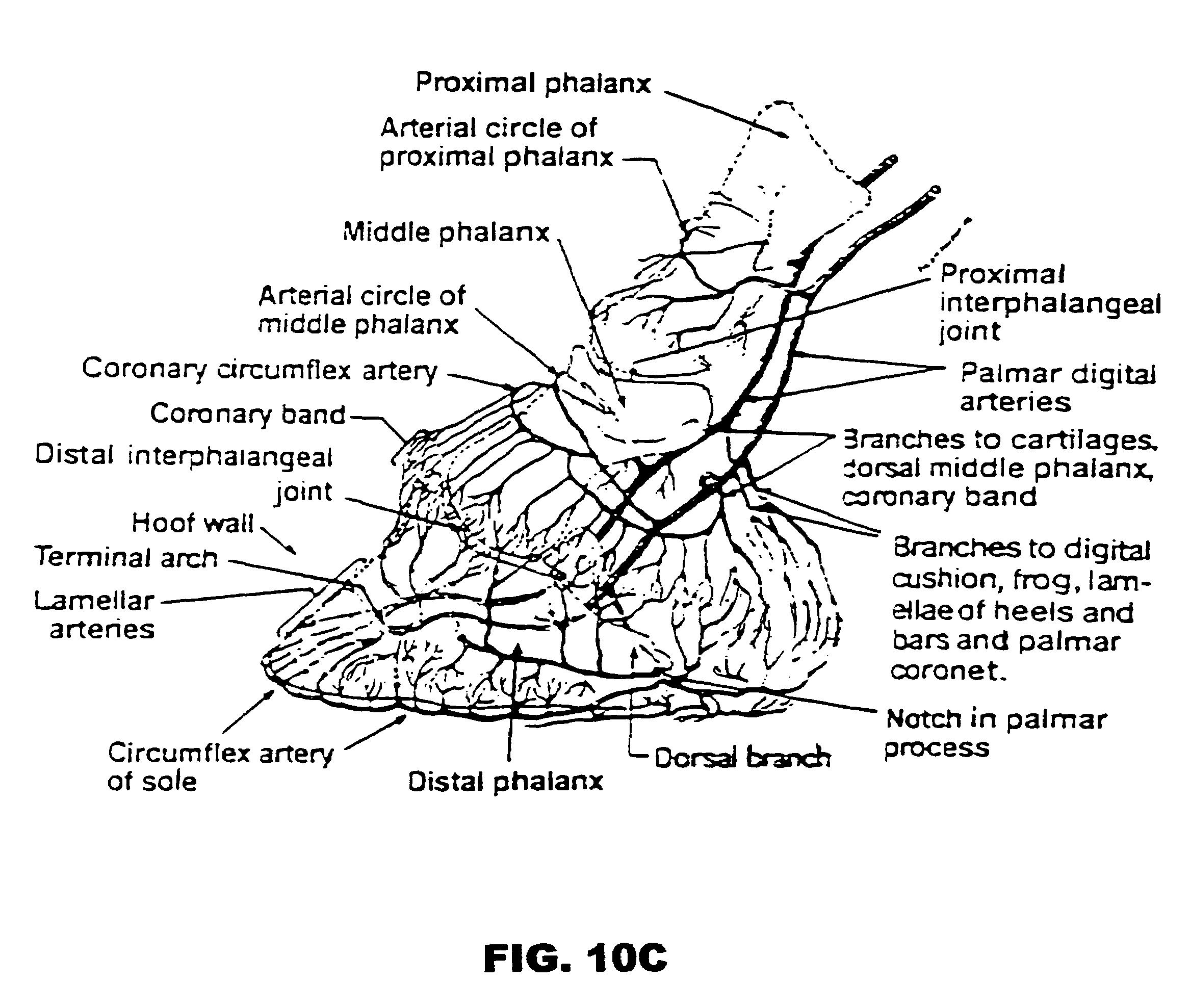 IHMC Public Cmaps (3)